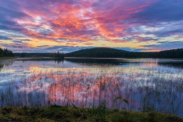 Uitzicht in de natuur om rustig en zonder afleiding te reflecteren tijdens leiderschapsreis Back to the Wild